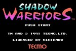 Ninja Gaiden Shadow Warriors Online