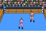 Tecmo World Wrestling Online